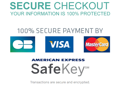 Secure-Online-Payment-Blue-Wings